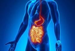 Gastroenterology:克罗恩病患者肠道长达1年的深度缓解可以有效延缓疾病复发