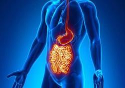 """Gastroenterology:克<font color=""""red"""">罗</font>恩病患者肠道长达1年的深度缓解可以有效延缓疾病复发"""