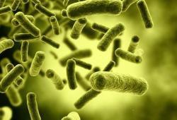 Clin Trans Gastroenterology:肝硬化患者难治性梭状芽胞杆菌感染的发病率和危险因素