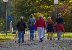 Aging Cell:年老体弱者的血浆蛋白有何特征?