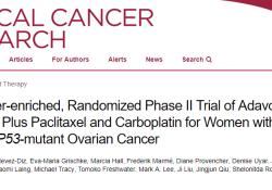 "Clin Cancer Res:WEE1激酶抑制剂adavosertib<font color=""red"">联合</font><font color=""red"">化疗</font>治疗TP53突变型卵巢癌"