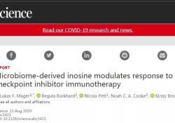 "Science:免疫疗法+<font color=""red"">微生</font><font color=""red"">物</font>疗法加强免疫系统识别和攻击癌细胞"
