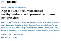 Nature:衰老個體中特定代謝物的積累可促進腫瘤進展?