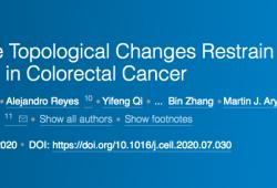 CELL:顛覆傳統觀念,染色質拓撲變化可抑制結直腸癌的惡性進展