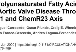 Circulation:ω-3多不飽和脂肪酸通過resolvin E1-ChemR23軸減輕主動脈瓣狹窄