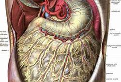 Xerava(eravacycline)治療復雜腹腔內感染:即將開展中國III期臨床試驗