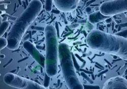 IBD:艰难梭菌感染会导致克罗恩病患儿首次肠切除时间大大缩短