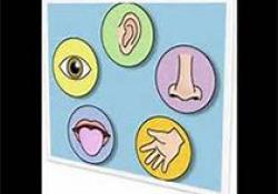 "Laryngoscope:<font color=""red"">听力</font><font color=""red"">损失</font>幼儿的父母代理进行生活质量测量的验证"