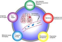 美国批准罗氏公司旗下新型全肿瘤液体活检测试平台