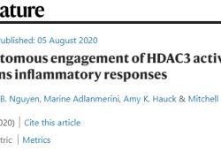 "【Nature】免疫""陰陽""誰調控?HDAC3蛋白是關鍵"