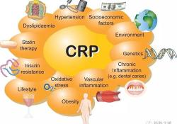 """Gastric Cancer:<font color=""""red"""">术后</font>C反应蛋白升高与<font color=""""red"""">并发</font><font color=""""red"""">症</font>发生的相关关系"""