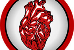 JCEM:男性和绝经后女性性激素水平与心力衰竭的关联