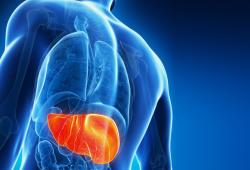 JHepatology:HCV的治疗可降低与病毒性肝炎相关的死亡率