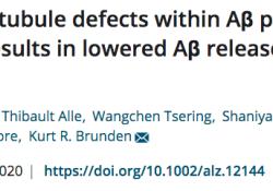 "Alzheimer'<font color=""red"">s</font> & Dementia:纠正微管缺陷药物有望治疗阿尔兹海默症"