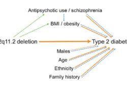 EClinical Medicine:22q11.2微缺失对2型糖尿病患病风险的贡献