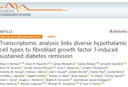 Nat Commun:转录组学分析揭示FGF1对2型糖尿病的缓解作用