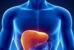 LiverInt: 自身免疫性肝炎中硫唑嘌呤的高终止率与治疗开始时间无关