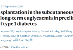 Nat Mebat:胰岛细胞皮下移植获突破,新技术成功逆转1型糖尿病