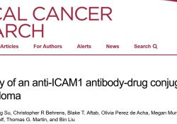 """Clin Cancer Res:抗ICAM1抗体-药物偶联<font color=""""red"""">物</font>用于<font color=""""red"""">多发</font><font color=""""red"""">性</font>骨髓瘤的潜在活性"""