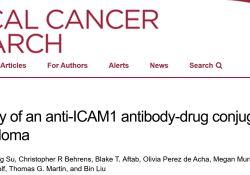 """Clin Cancer Res:抗ICAM1<font color=""""red"""">抗体</font>-<font color=""""red"""">药物</font><font color=""""red"""">偶联</font>物用于多发性骨髓瘤的潜在活性"""