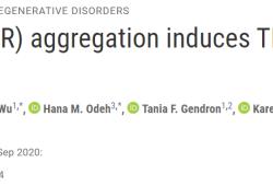 Sci Transl Med:反义寡核苷酸龙头Ionis管线药物,如何对抗痴呆症和肌萎缩侧索硬化症?