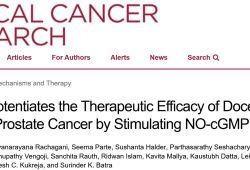 Clin Cancer Res:低剂量西地那非即可大大增加前列腺癌对多西他赛的敏感性!