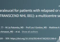 "Lancet:Liso-cel治疗复发性/难治性大<font color=""red"">B</font><font color=""red"">细胞</font>淋巴瘤活性好、安全性高"