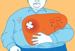 WorldJGastroenterology: 营养状况和营养支持在乙型肝炎病毒相关的慢性慢性肝衰竭中的作用