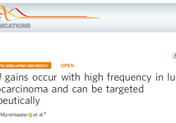"Nat Commun:MCL-1或可成为肺腺癌的潜在治疗<font color=""red"">靶标</font>"