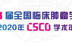 "CSCO 2020丨王峰、林岩<font color=""red"">松</font>、李晓峰教授:肿瘤核素诊治专场"