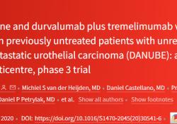"Lancet oncol:<font color=""red"">PD</font><font color=""red"">-L1</font>抑制剂Durvalumab±曲美<font color=""red"">单抗</font>治疗转移性尿路上皮癌"