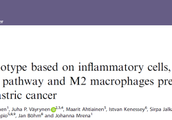 "Br J Cancer:免疫相关机制影响<font color=""red"">胃癌</font>患者的生存率"