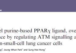 "Br J Cancer:<font color=""red"">新型</font>PPARγ激动剂CB11:非小细胞肺癌的潜在治疗<font color=""red"">药物</font>"