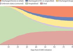 "Lancet:36个国家213家<font color=""red"">医院</font> | 采用ECMO支持的新冠肺炎患者的死亡率"