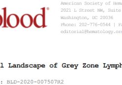 """Blood:灰<font color=""""red"""">区</font><font color=""""red"""">淋巴</font><font color=""""red"""">瘤</font>的突变特征!"""