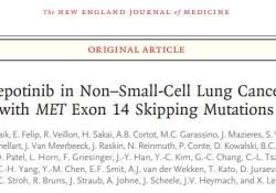 "NEJM:Tepotinib治疗MET<font color=""red"">外显</font><font color=""red"">子</font>14跳跃突变非小细胞肺癌II期临床效果显著"