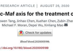 """Blood:Otub1/<font color=""""red"""">c</font>-Maf轴可能是<font color=""""red"""">多发</font><font color=""""red"""">性</font><font color=""""red"""">骨髓瘤</font>的潜在治疗靶点"""