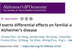 Alzheimer's & Dementia:宣武医院贾建平团队发现,APOE ε4对阿尔茨海默病的不同亚型产生不同的影响