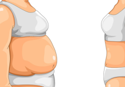 GUT:脂肪组织来源的细菌与肥胖症和2型糖尿病的发病相关