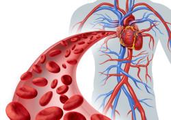 指南直通车|长期口服抗凝剂NSTE-ACS患者的抗血小板治疗