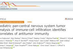 Nat Commun:CNS肿瘤免疫微环境分析揭示抗肿瘤免疫相关性
