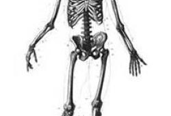 26岁,腰痛2年,后屁股也痛,几个医生束手无策,专家:晚来一步,就要残废了!