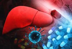 Br J Cancer:晚期肝细胞癌患者诊断性活检的可行性分析