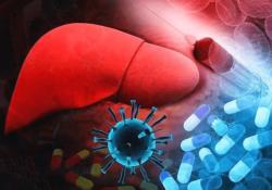 """Br J Cancer:晚期肝细胞癌患者诊断<font color=""""red"""">性</font>活检的可行<font color=""""red"""">性</font>分析"""