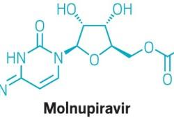 FDA将召开咨询委员会会议,以讨论默克和Ridgeback的COVID-19口服疗法molnupiravir