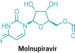 "FDA将召开咨询委员会会议,以讨论<font color=""red"">默</font><font color=""red"">克</font>和Ridgeback的COVID-19口服疗法molnupiravir"