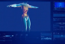 Kidney Int:肾脏3D成像在肾脏发育和疾病发展中的应用突破