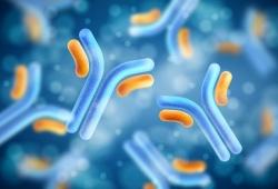 Front Immunol:自身免疫性水疱病中抗桥粒芯胶原自身抗体的研究