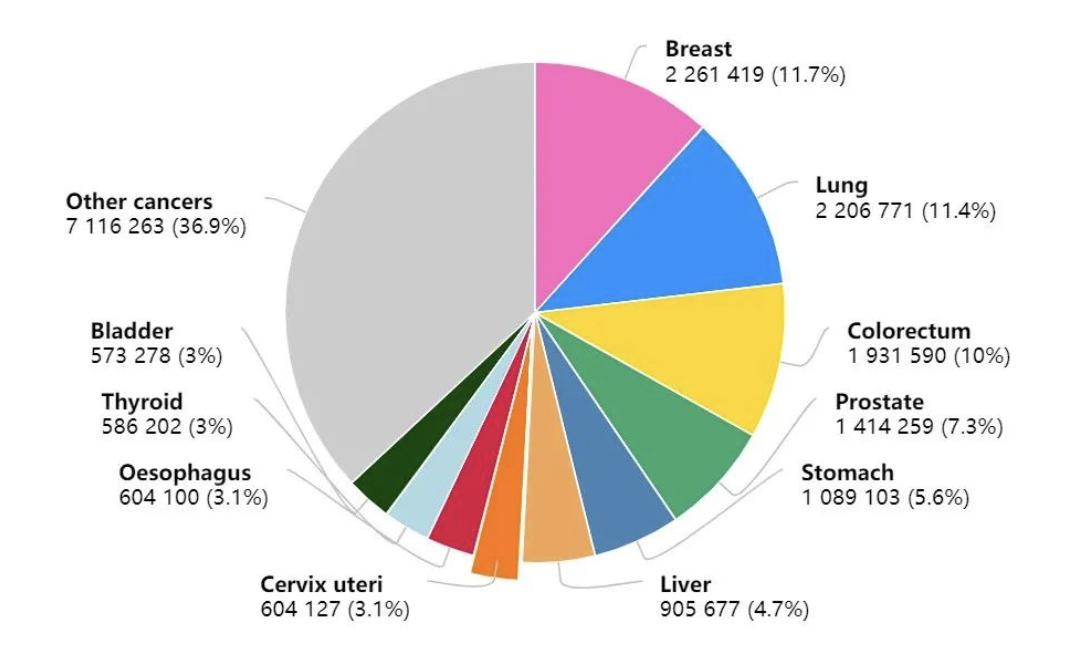 JAMA Oncol:对于激素受体阳性乳腺癌,帕博西尼 ➕来曲唑 优于帕博西尼 ➕氟维司群
