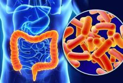 IBD: 围手术期使用地塞米松可以减少炎症性肠病患者手术后的过度炎症反应和肠梗阻的发生